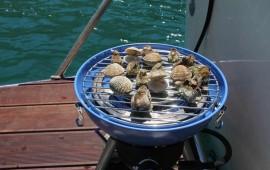 Izlet brodom  uz degustaciju plodova mora