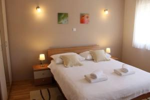 apartman-guesthouseankora04